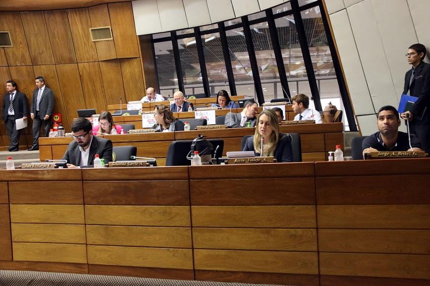CONGRESO PY. Diputados Sesionando