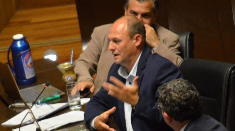 Diputado Carlos Goring (PAyS)