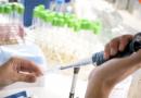 Desarrollo científico contra el dengue de la UNSAM