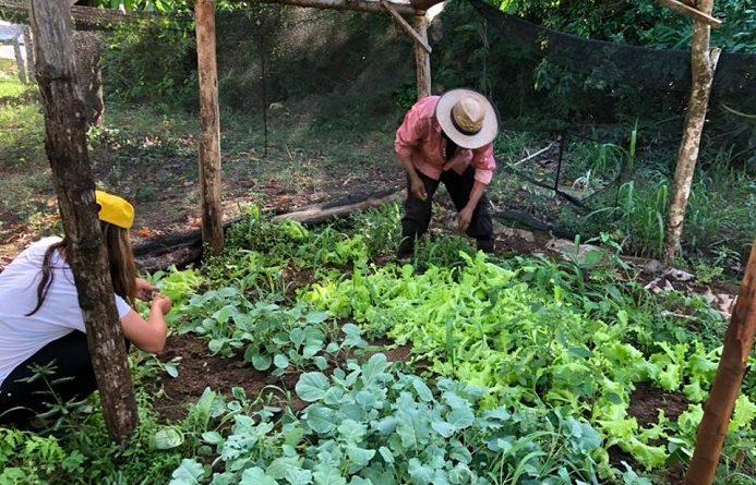 Pequeños productores de Gobernador Roca