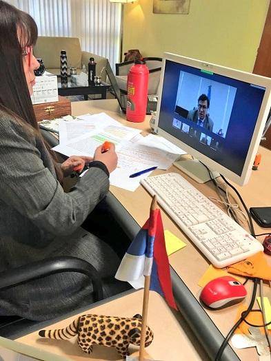 videoconferencia la II reunión del Consejo Federal del Trabajo