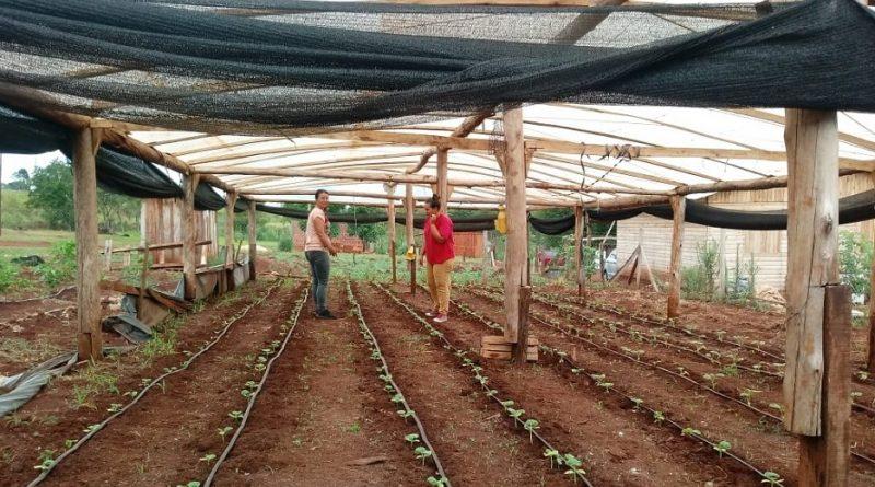 Sereno pide que se implemente el programa de soberanía alimentaria