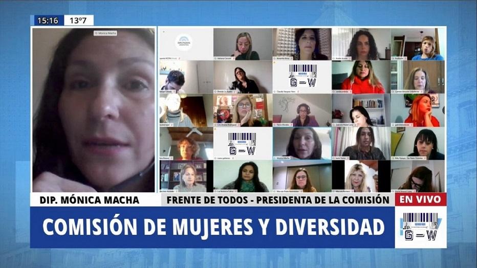 Video conferencia de la comisión de mujeres y diversidad