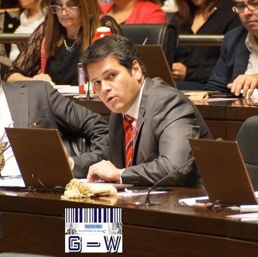 Diputado Provincial Gustavo González (UCR)