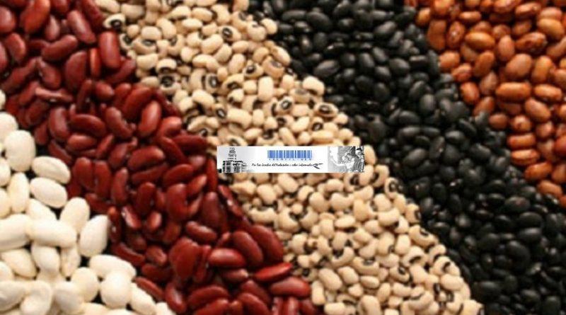 Exportación de porotos Argentinos