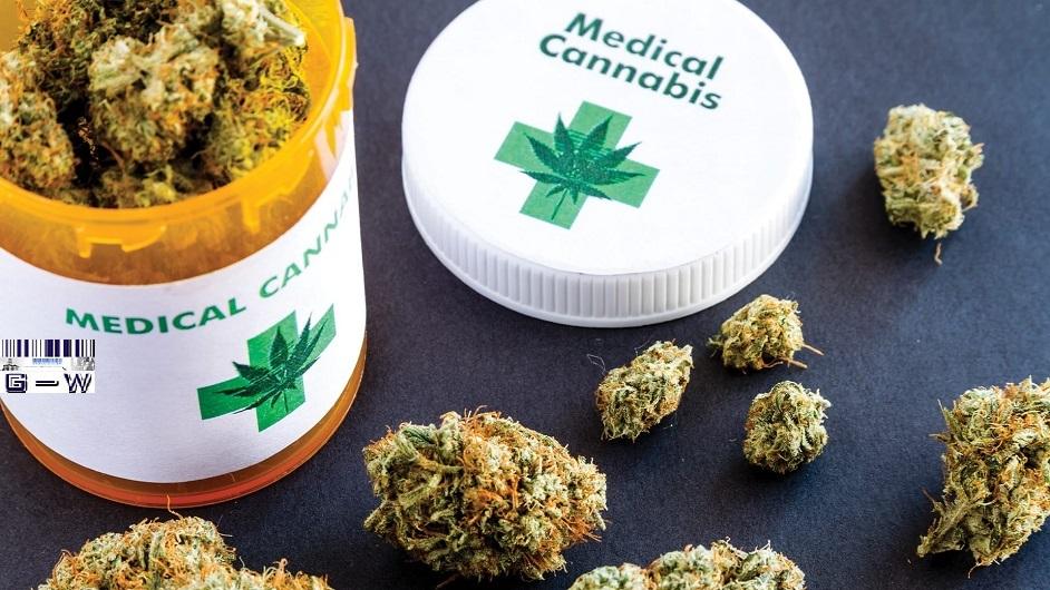 """Cannabis Medicinal Sociedad Estatal """"Misio-Pharma"""""""