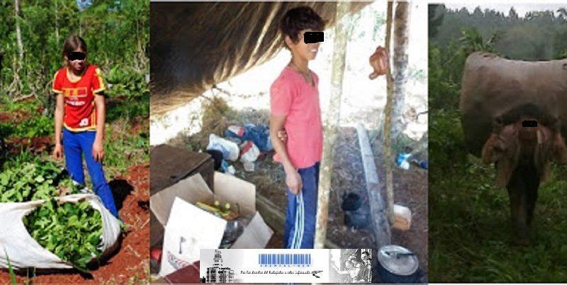 Detectan trabajo infantil en San Pedro y El Soberbio