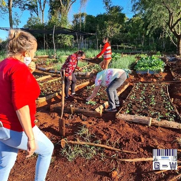Organizaciones sociales y cooperativas producen alimentos en tierras ociosas entregadas en comodato