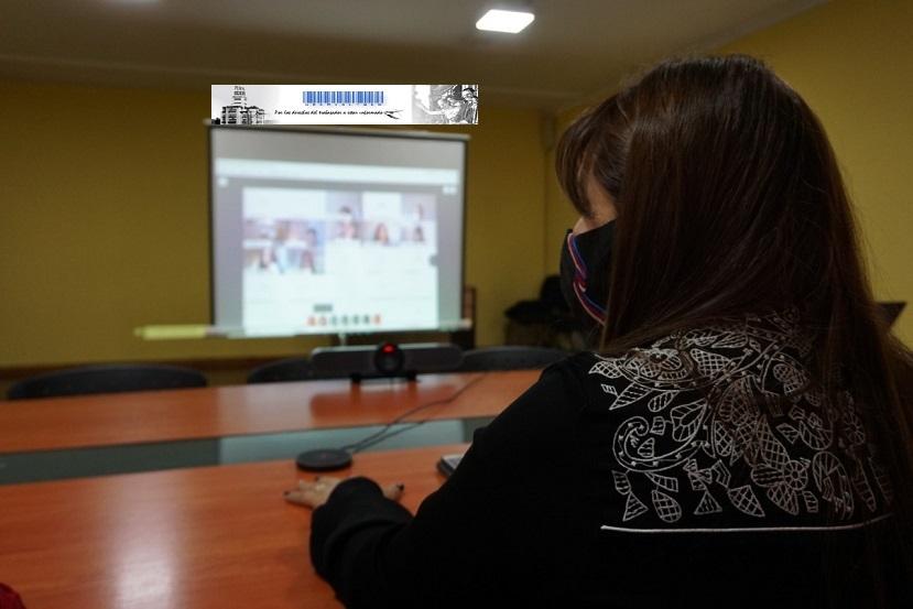 Reunión plenaria de CONAETI - video conferencia