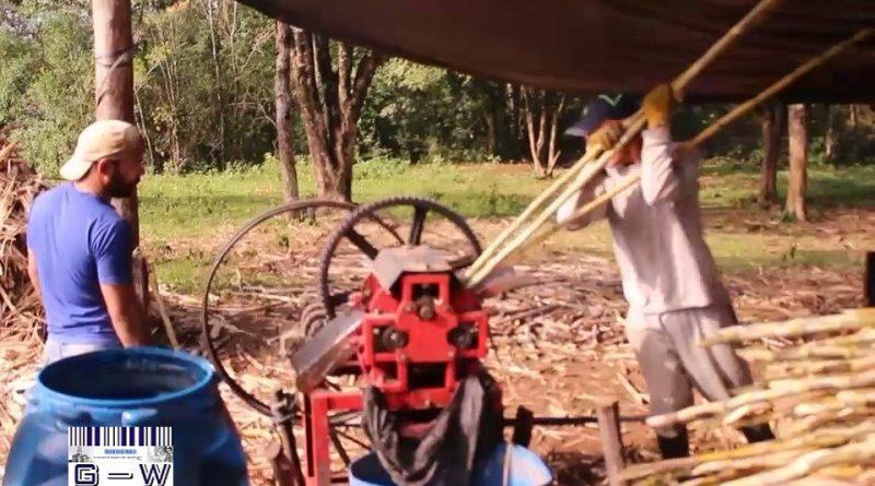 Producción de Azúcar Rubio Artesanal