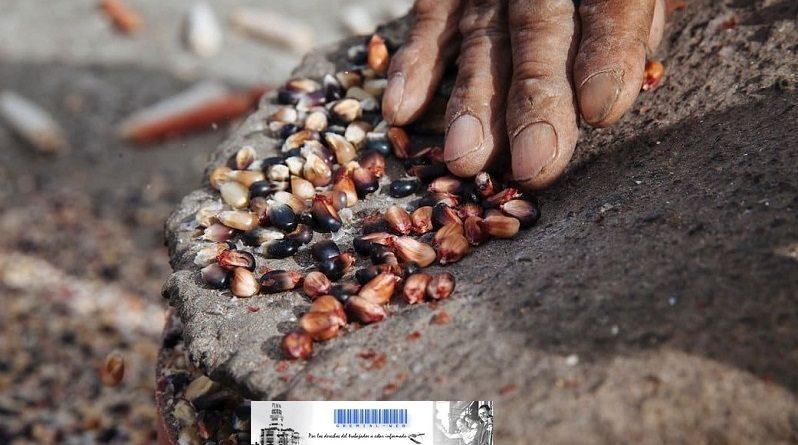 Ley de de Semillas Nativas y Criollas
