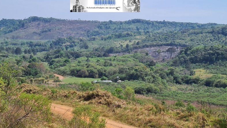 En la Colonia Itatí de Bernardo de Irigoyen, las familias productores reclaman energía eléctrica