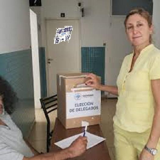 Elecciones Gremiales