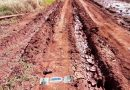 Caminos de la Picada Los Pinos San Vicente, en pésimas condiciones