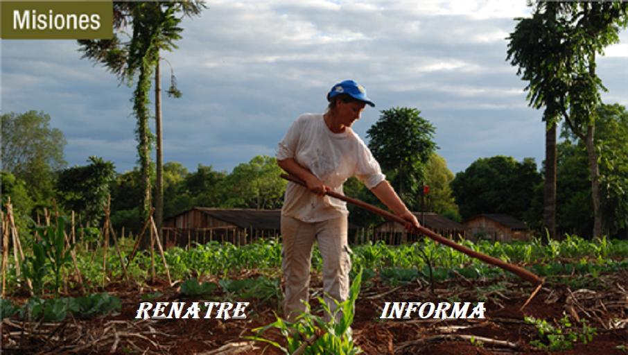 RENATRE- Misiones-Informa