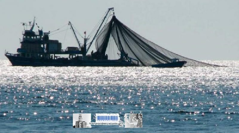 Continúa la negociación de eliminación de subsidio al sector pesquero en la OMC